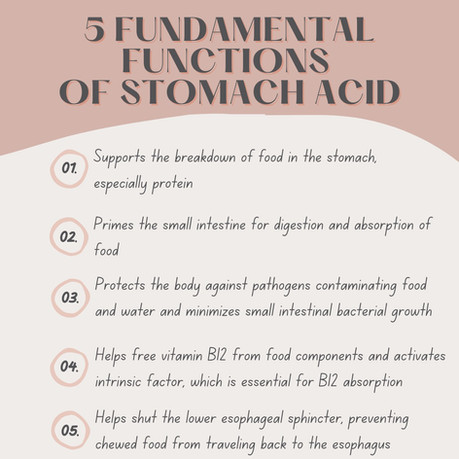 Stomach Acid 101: What it is, Why it's incredibly important, and Ways to support its production