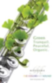 miyazawa-green-poster.jpg