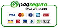 Pagseguro-Bandeiras.png