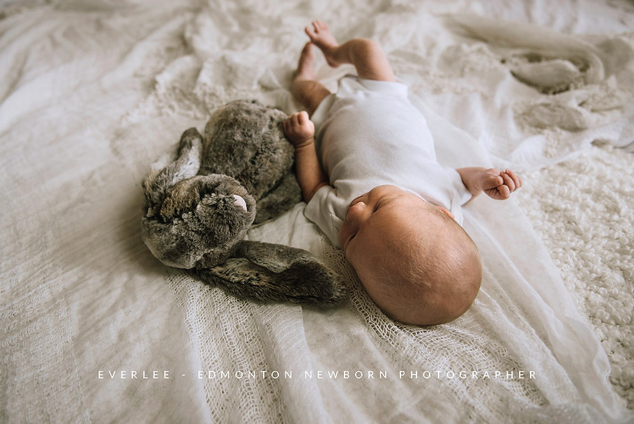 edmonton-lifestyle-newborn-photographer.