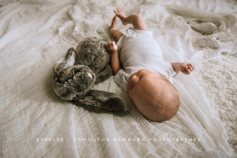 edmonton-lifestyle-newborn-photographer.