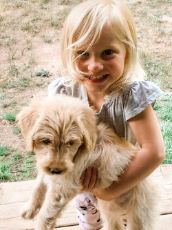 kid with goldendoodle