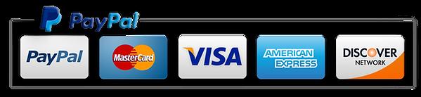 NicePng_paypal-icon-png_2076847.png