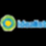 idealist logo-01.png