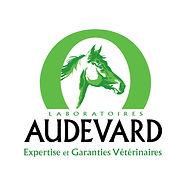 logo-audevard-2048-x-1536-01-1.jpg