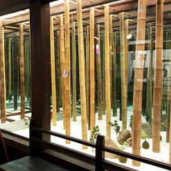 Bamboo Display