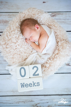 newborn natural photography_5