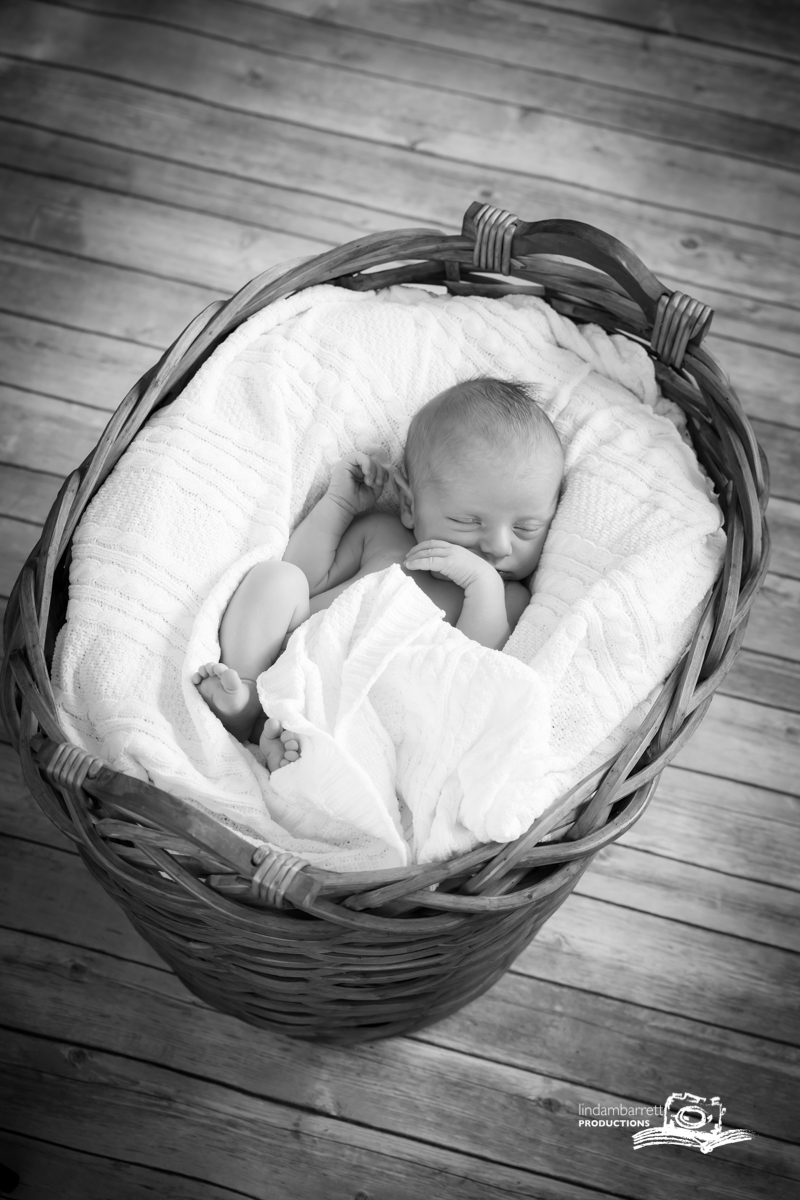 aiden_basket newborn