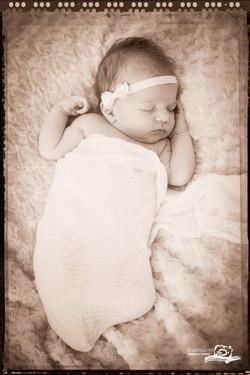 newborn natural photography_12
