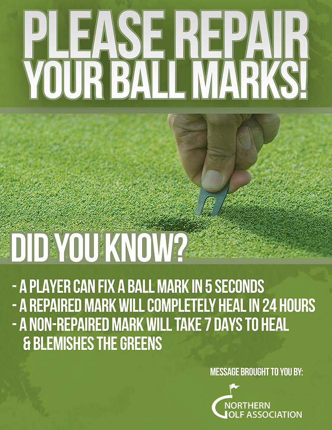 Ball Mark Poster.png
