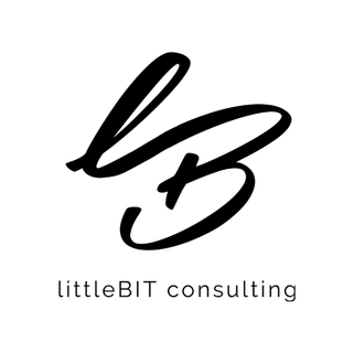 littleBIT consulting