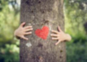 Tree Hugging Heart.jpg