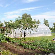 kasvuhoone 2.jpg