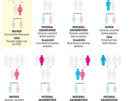 Trauma Can Be Inherited - Scientific America: Descendants of Holocaust Survivors Have Altered Stress