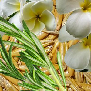gel-de-baño-flores-blancas.png