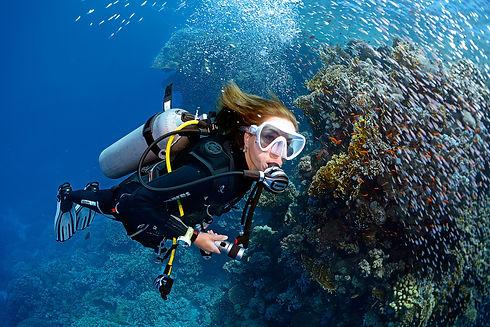 Open Water Niveau 1 Plongée Malte.jpg