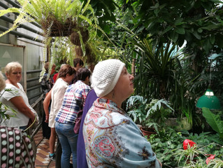 Раскрывая тайны ботанического сада
