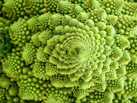 Fractals as a Model for Personal and Social Transformation