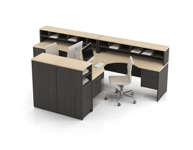2 Person Workstation