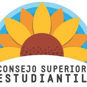 ¿Qué dice el EOFEUCR acerca del Consejo Superior Estudiantil (CSE)?