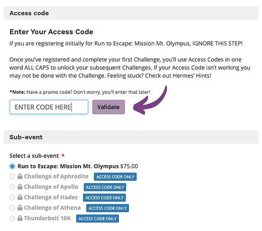 Access Code Screenshot.png