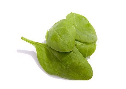 Spinach leaves cp.jpg