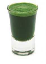 Wheatgrass Shot Glass.jpg