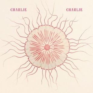 Charlie Charlie - Save Us