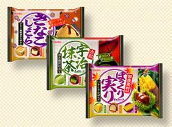 名糖産業 / ほっくり実りチョコレート
