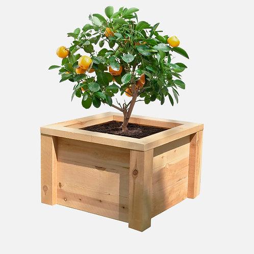 """Planter Box: 27"""" W x 27"""" D x 18""""H"""