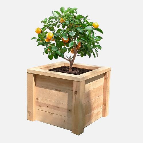 """Planter Box: 27"""" W x 27"""" D x 24"""" H"""