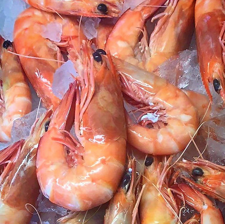 Mermaid Beach Seafoods - Fresh Tiger Pra