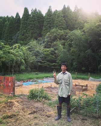 Garden bed making