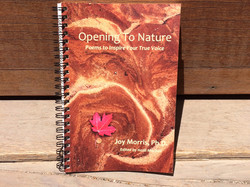 Opening to Nature
