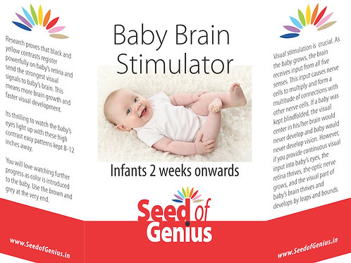 Baby Brain Stimulator Flashcards