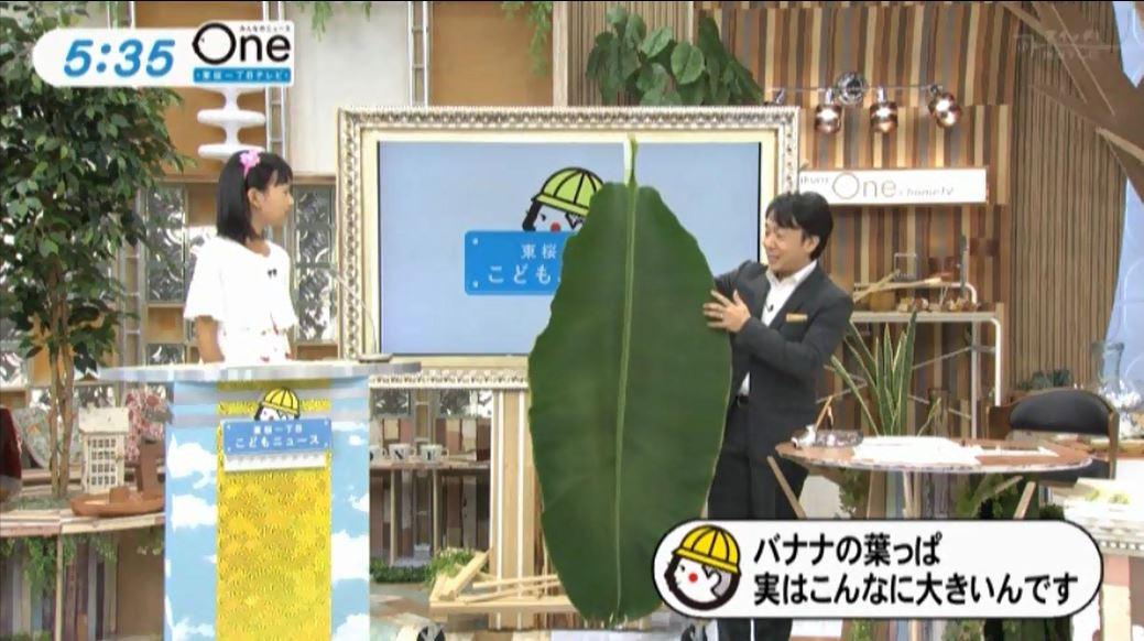 テレビキャプチャ4