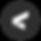 V horiz logo - TAG carat.png