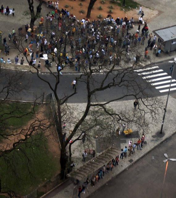 Arvore Gente, São Paulo. Photo: Julio Kohl.