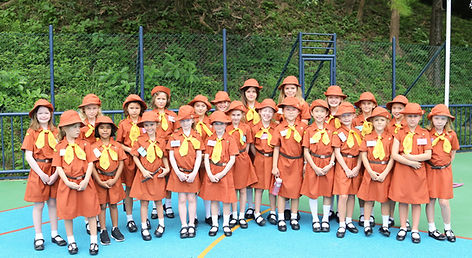 Discovery Bay Brownies