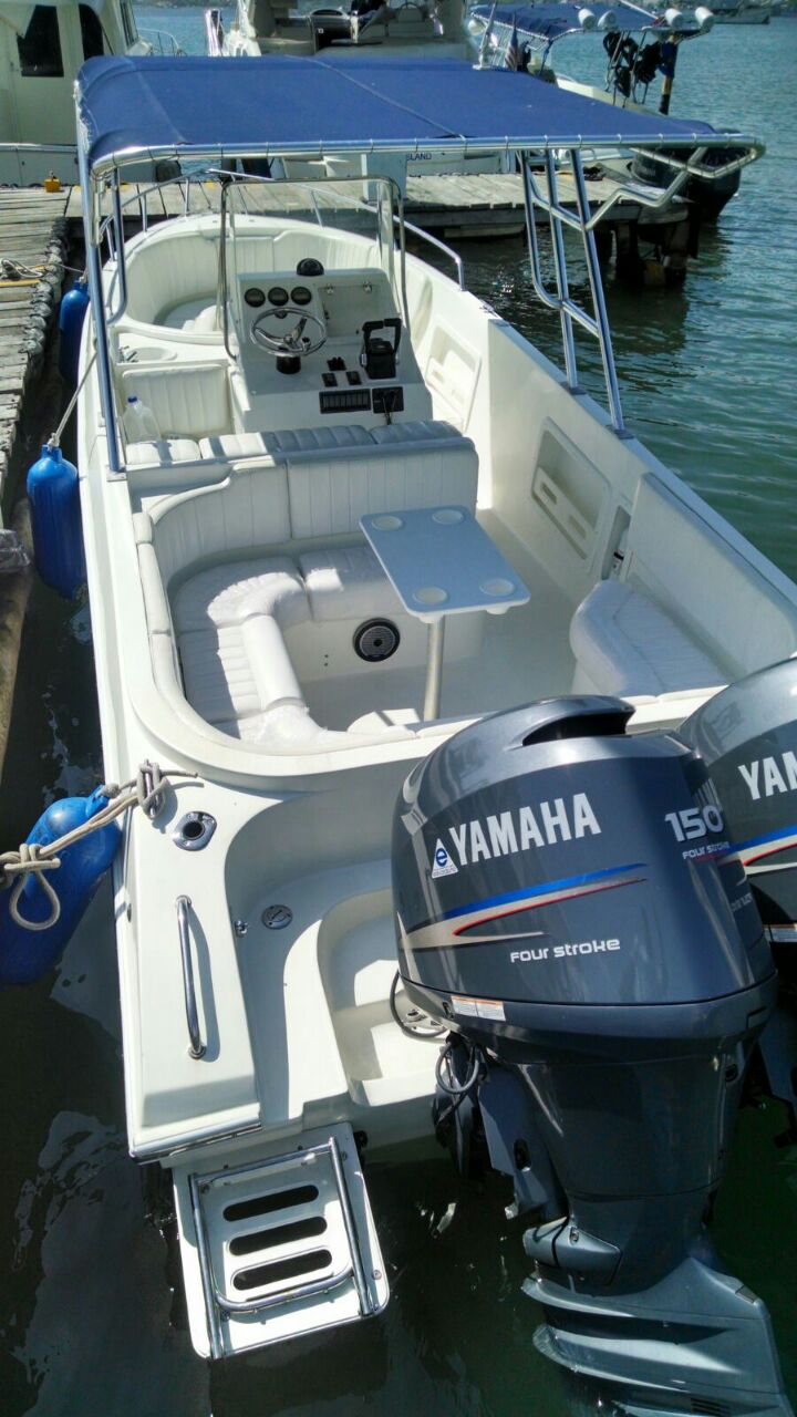 powerboat 29 cartagena