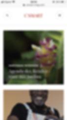 blog csmart.jpg