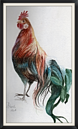 Rooster in Watercolor 1_edited