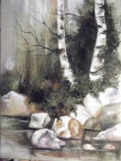 Birch by the Creek.JPG