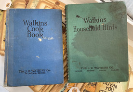 In 1930, young widow turned to Watkins sales for family's support