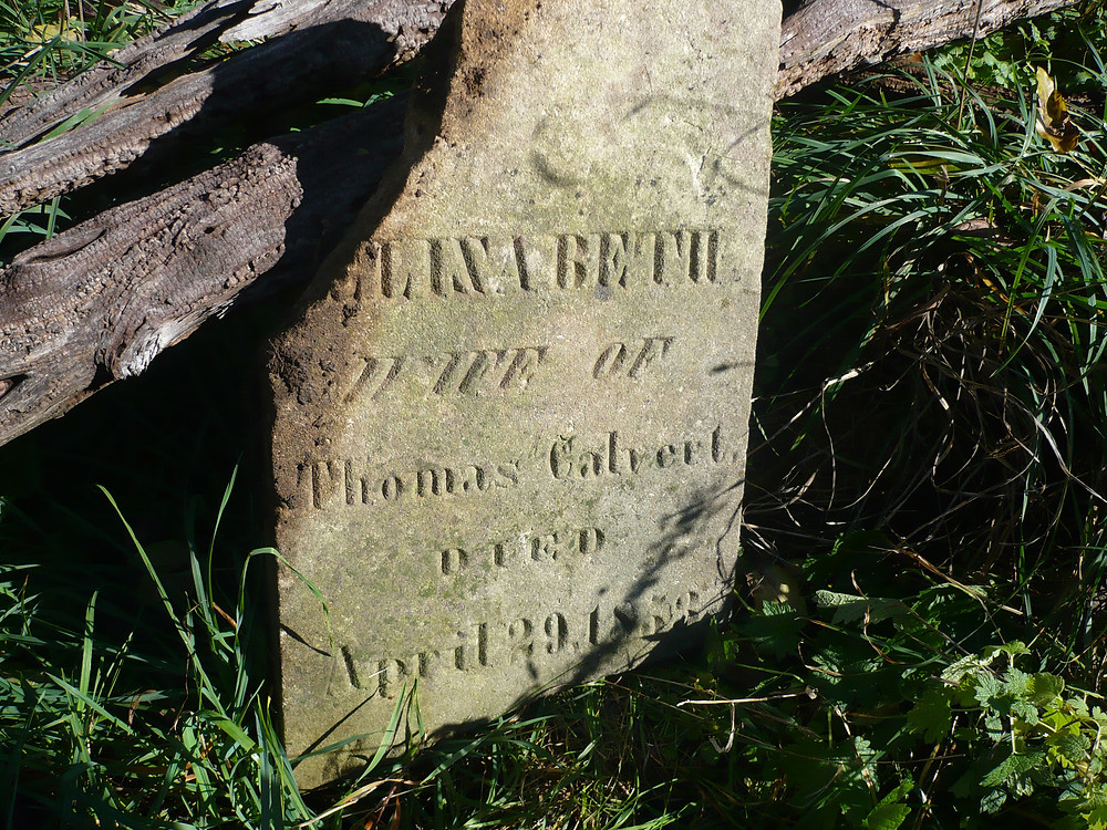 Calvert, Elizabeth.JPG