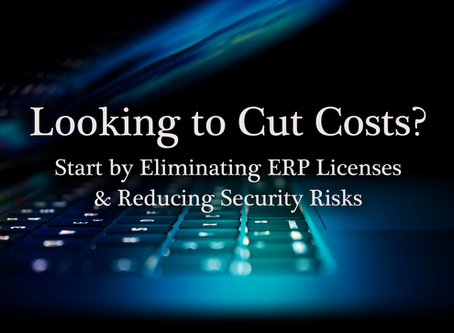 Looking to Cut Costs? Start by Eliminating ERP Licenses and Reducing Security Risks