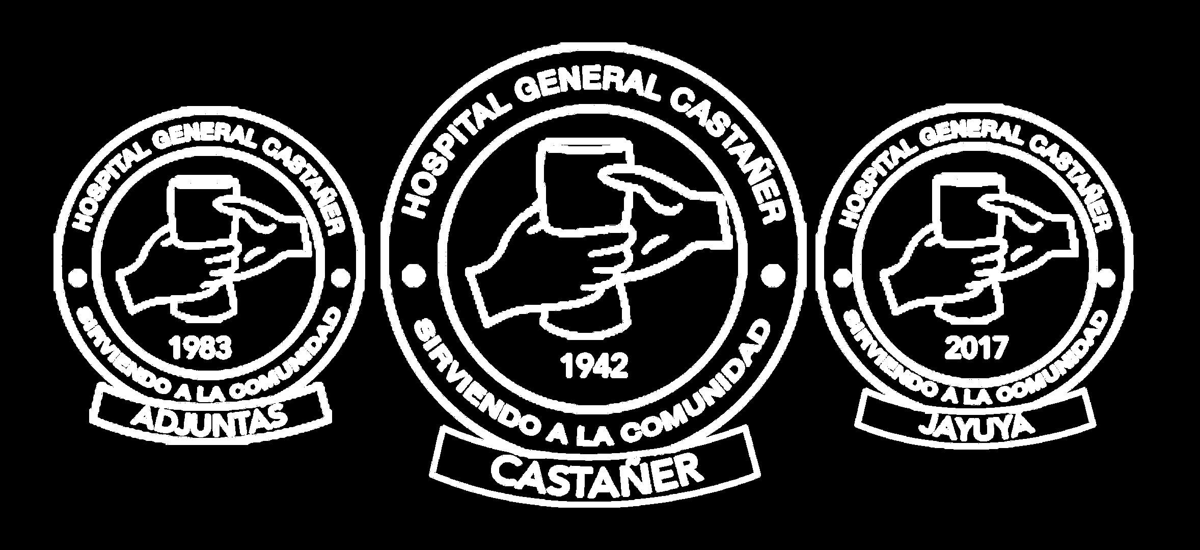 Hospital-general-castañer-LOGOS-con-re