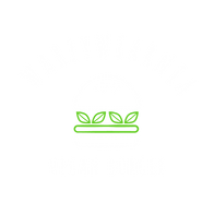 białe zielone bez tła bez koła.png