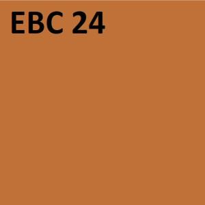 EBC-24.jpg