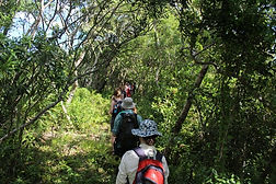 hiking_4_copy__1.jpg